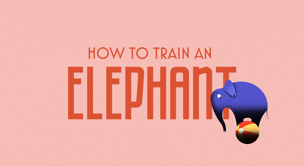 Train an Elephant